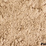 What is WPC Whey Protein Concentrate
